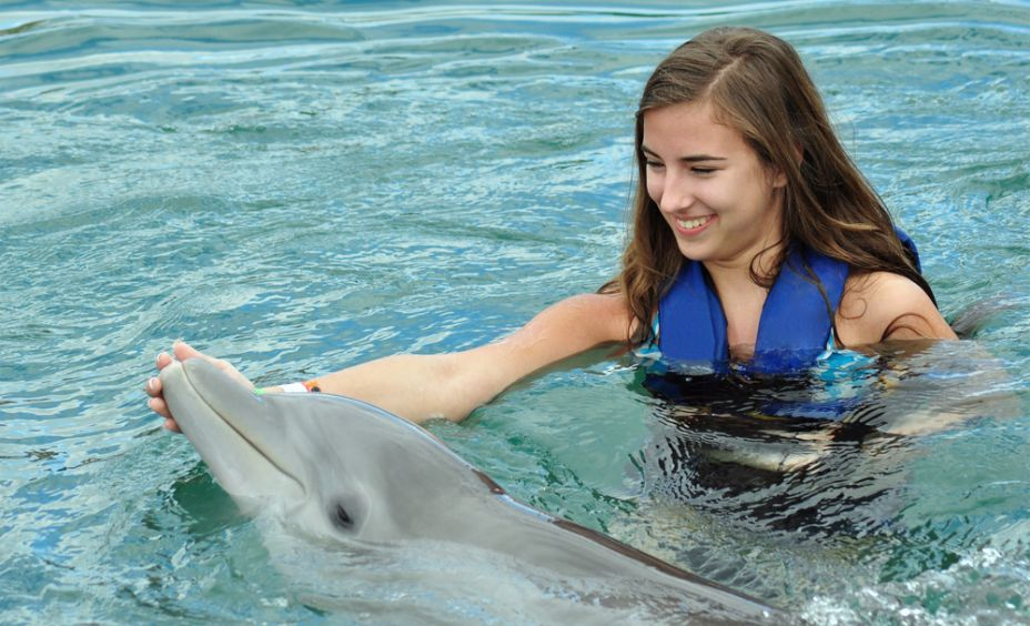 orlando swim with dolphins